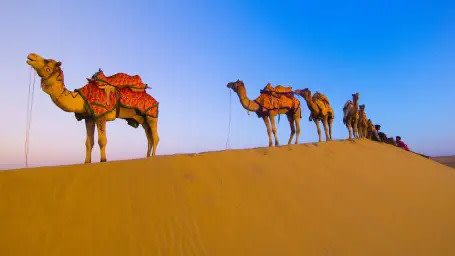Camel desert ride at Bara Bungalow Kalwar, Jaipur, Experience at Bara Bungalow Kalwar, Jaipur, Luxury Villa in Jaipur, Jaipur Villas