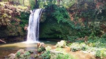 Corbett Falls Near Corbett Wild Iris Spa Resort