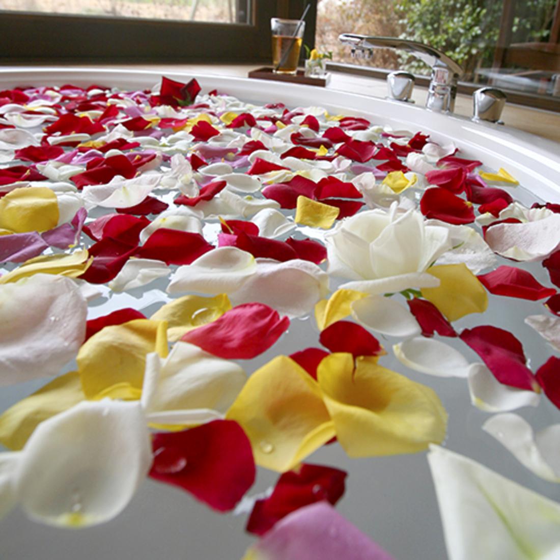 Hablis Hotel Chennai Chennai rose-petal-bath Spa Hablis Hotel Chennai