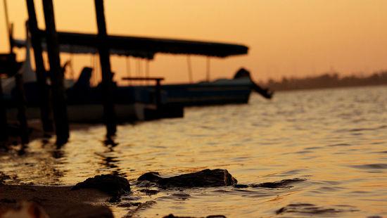 Ousteri Lake, The Promenade Hotel Pondicherry