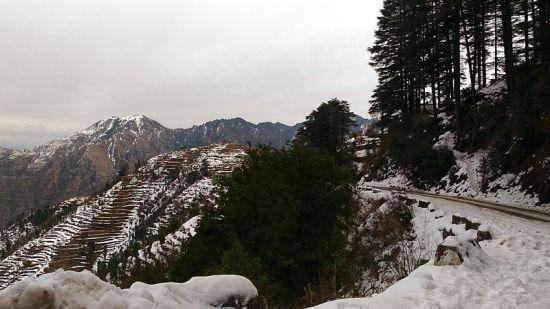 Mussoorie Shaheenbagh resort Dehradun 1_Uttarakhand Best Resorts