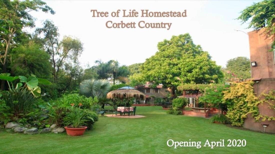 Tree of Life Homestead