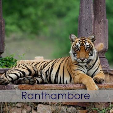 ramthambore