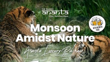 Ranthambore monsoon pkg
