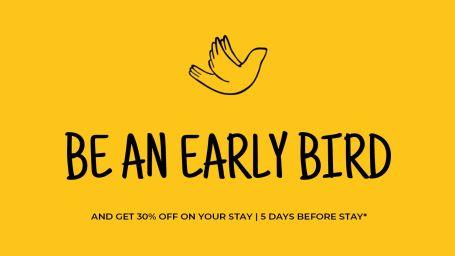 Early Bird-0 1