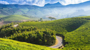 Munnar Summit Hotels and Resorts