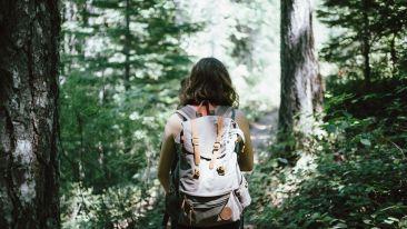 hiker-918704 1920