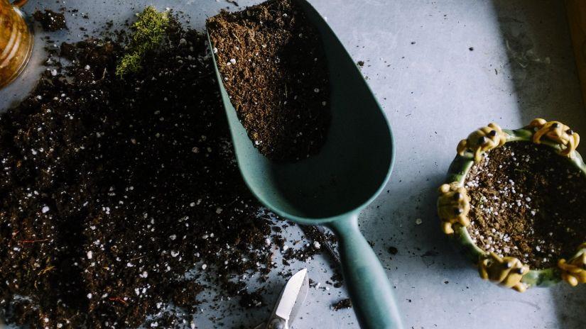 gardening-690940 1920
