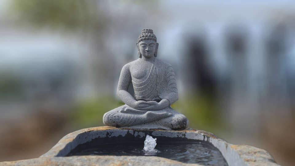 Buddha water body a
