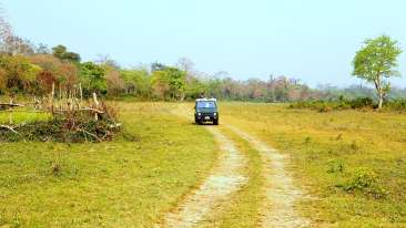 Kaziranga safari 2000