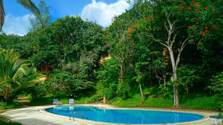 Swimming Pool at our resort in Thekkady, Abad Green Forest, Thekkady-5