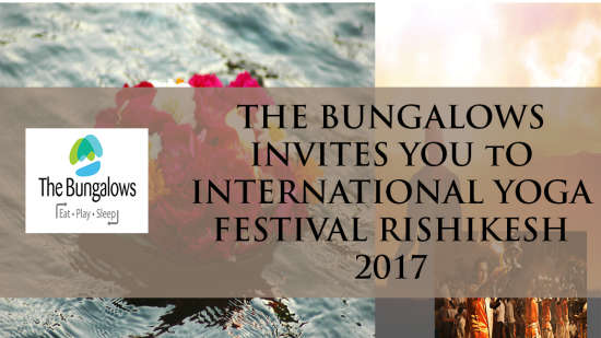 The Bungalows  Yoga festival banner -Bungalows