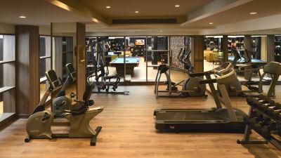 gym The Muse Sarovar Portico Kapashera New Delhi