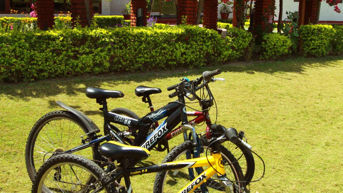 43 Bicycle Riding