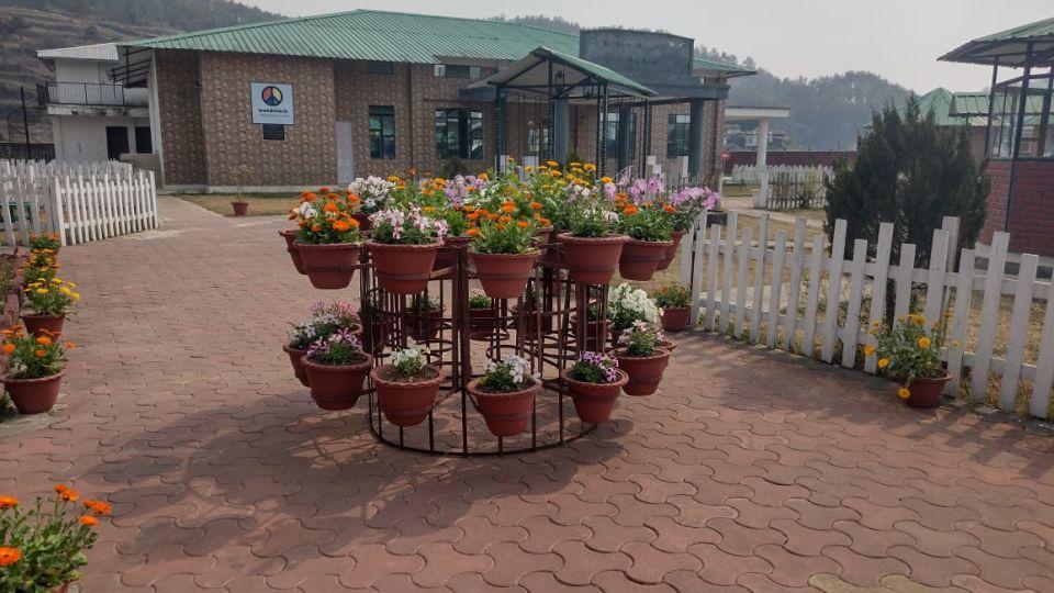 Woodstock Farmhouse   Air BnB in Shillong
