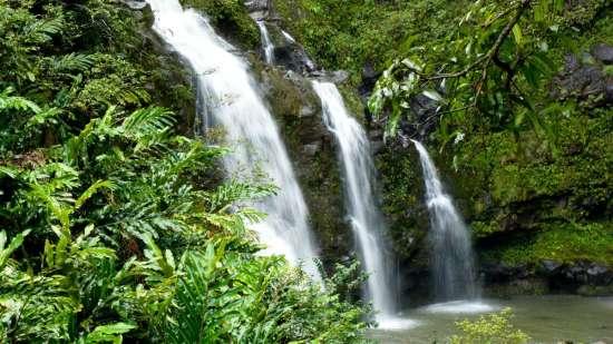 jungle waterfall aloha on the ganges