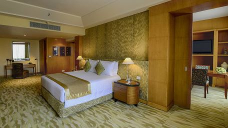 Room The Grand New Delhi 118