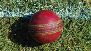 Moksha Himalaya Spa Resort, Chandigarh Chandigarh Used cricket ball