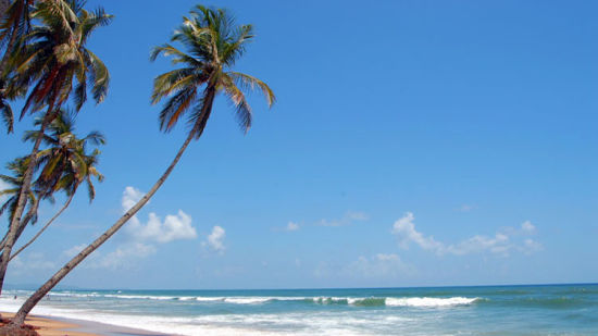 Colva Beach, Nearby Attractions, Holiday Packages in Goa, Lotus Eco Beach Resort Benaulim Goa