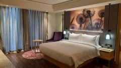 Deluxe suites Bedroom1