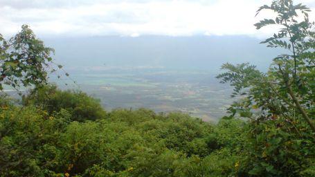 thekkady Poetree Sarovar Portico places to visit in Kerala 5