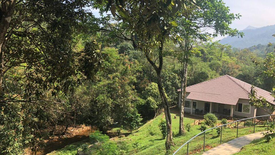 Rooms in Wayanad, Best Resorts in Wayanad, Nature Resorts in Vythiri 10