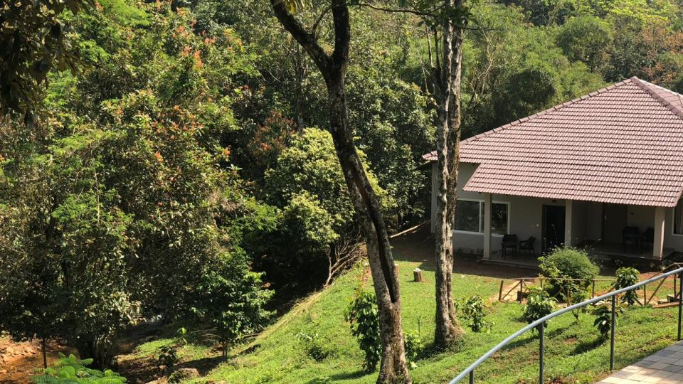 Rooms in Wayanad, Best Resorts in Wayanad, Nature Resorts in Vythiri 16