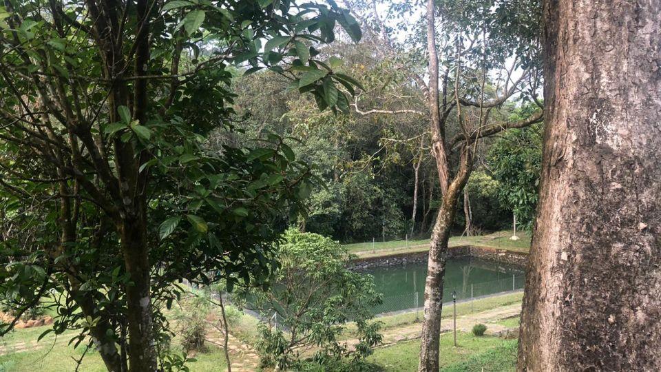 Rooms in Wayanad, Best Resorts in Wayanad, Nature Resorts in Vythiri 32