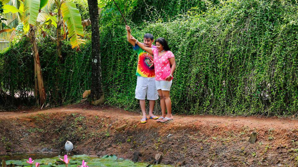 Renai Green Fields Kumarakom Resort 8
