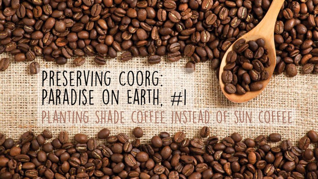 Coorg Coffee, Amanvana Spa Resort, activities in Coorg 22
