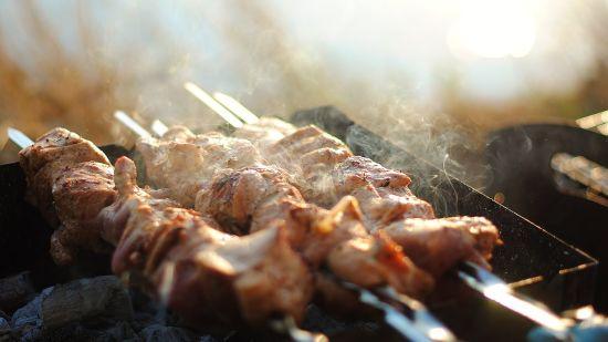 shish-kebab,Nirvana Sarovar Portico, restaurant in Gorakhpur