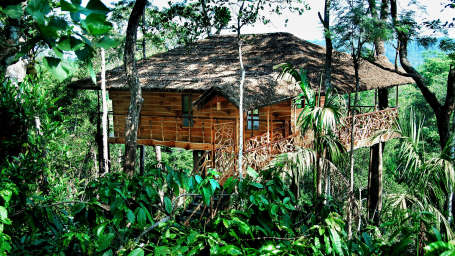Tranquil Resort, Wayanad Wayanad Tree house at Tranquil Resort Wayanad Kerala