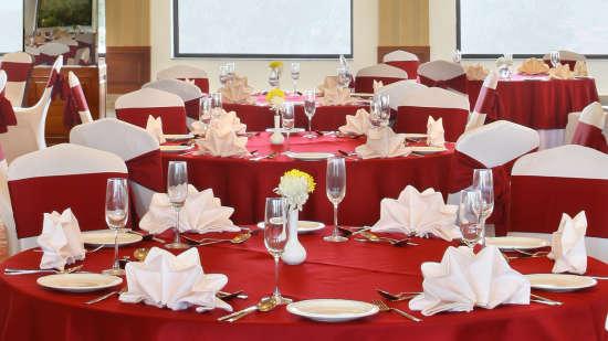 Banquet Halls at RS Sarovar Portico Palampur, Hotels in Palampur 8