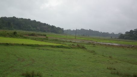 Coorg Amanvana Spa Resort Hotels in Coorg