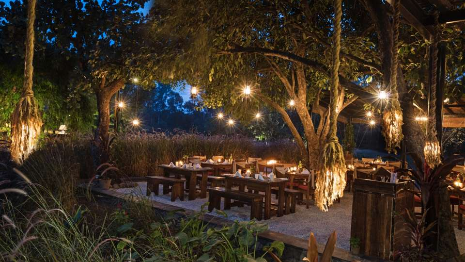 Under The Jamun Tree-Restaurant in Bhopal-Jehan NumaRetreat-Resorts in Bhopal