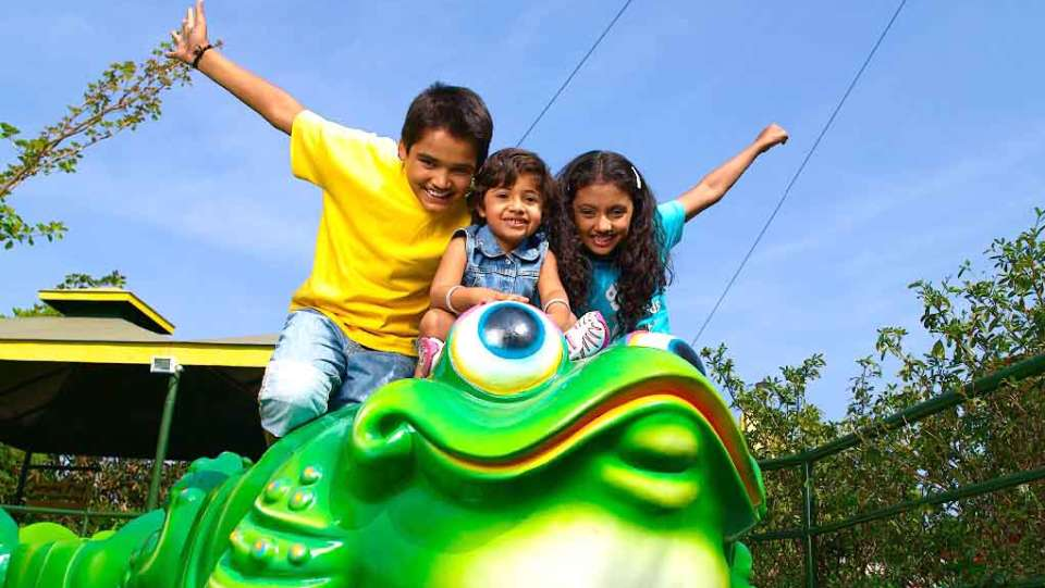 Kids Rides - Jumping Frog at  Wonderla Amusement Park Bangalore