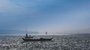 Vellayani Lake  Trivandrum  Kerala chhv5d