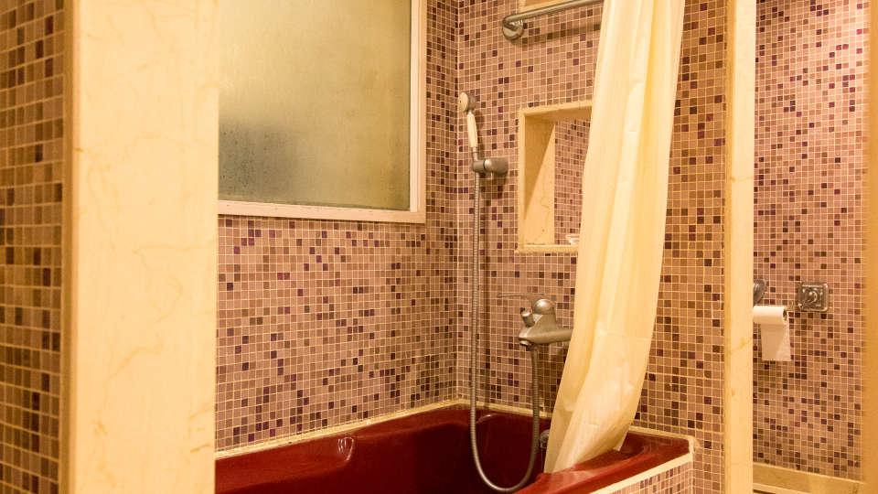 Suites near Ahmedabad, Facilities at our Ahmedabad Suite, Hotel Sarovar Ahmedabad