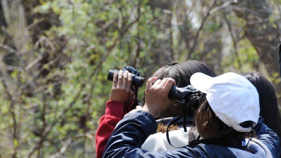 Ojaswi Resort, Chaukori Chaukori Bird Watching Activities at Ojaswi Resort Chaukori