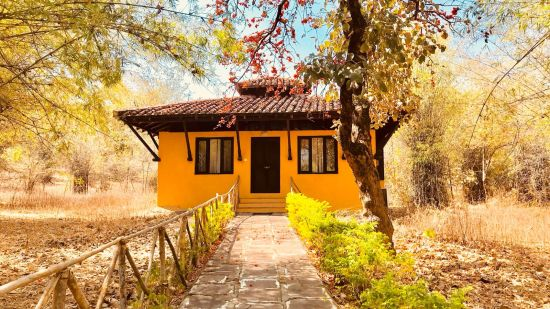 Villa at Infinity Resorts Bandhavgarh, Villas in Bandhavgarh 5