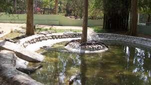 Abids Inn- Homestay, BTM Layout Bengaluru Bannerghatta National Park Abids Inn Homestay BTM Layout