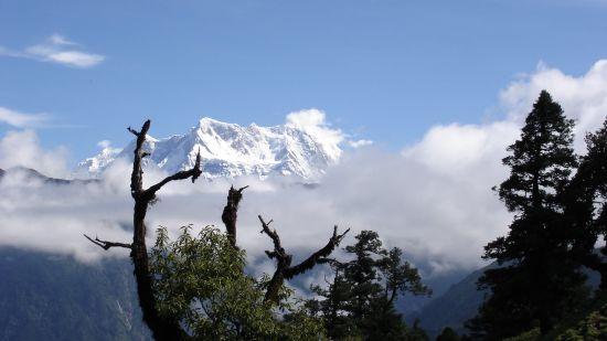 View of Himalaya near Aloha On the Ganges Rishikesh Resort and Hotel Rishikesh