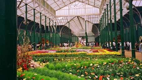 The Sanctum Suites, Bangalore Bangalore Lal bagh