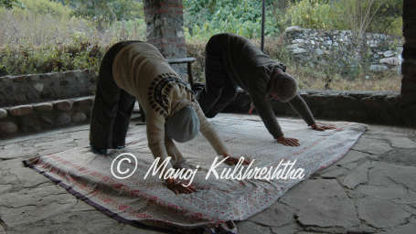 Wild Brook Retreat, Yoga & Meditation, Uttarakhand Resorts