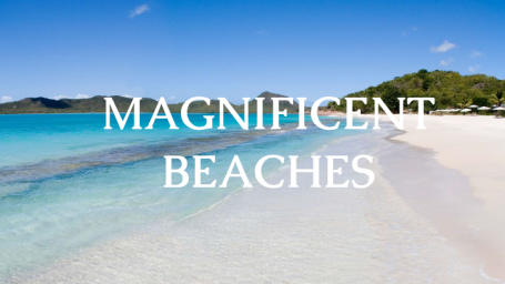 The Bungalows  MAGNIFICENT BEACHES