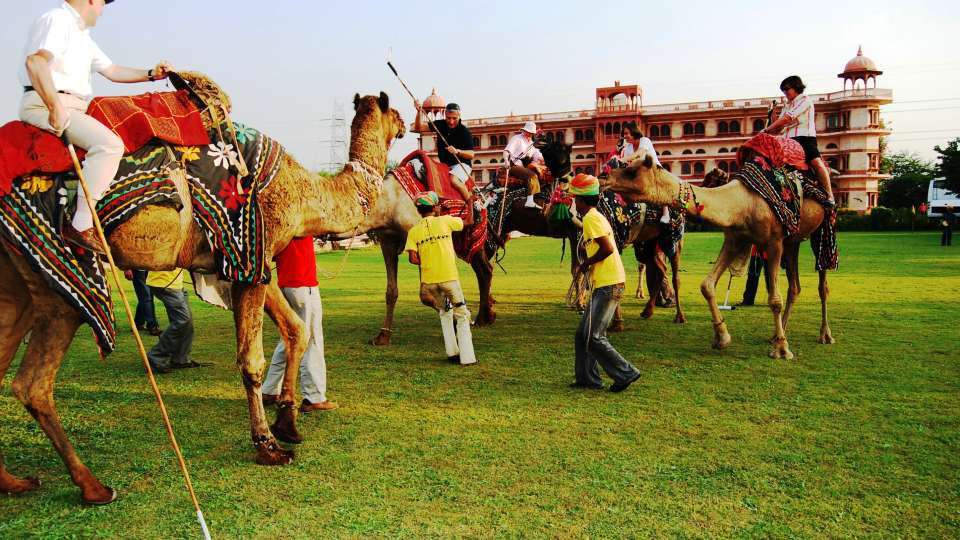 Umaid Lake Palace Dausa  Camel Polo with Champagne Lunch or High Tea 9