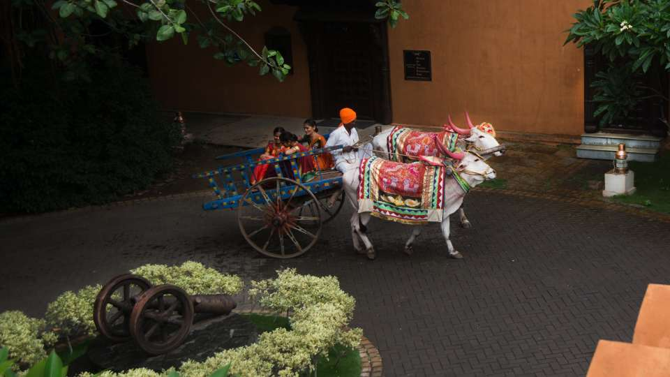 Bullock Cart Ride at Fort Jadhavgadh Heritage Resort Hotel Pune