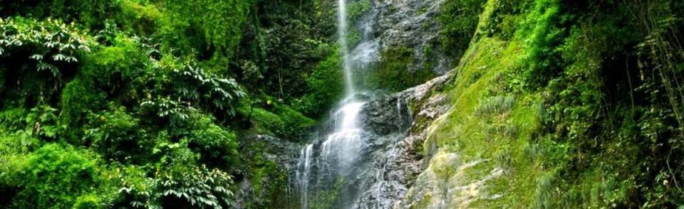 Things to do in Shimla Summit Hotels Resort in Shimla 8