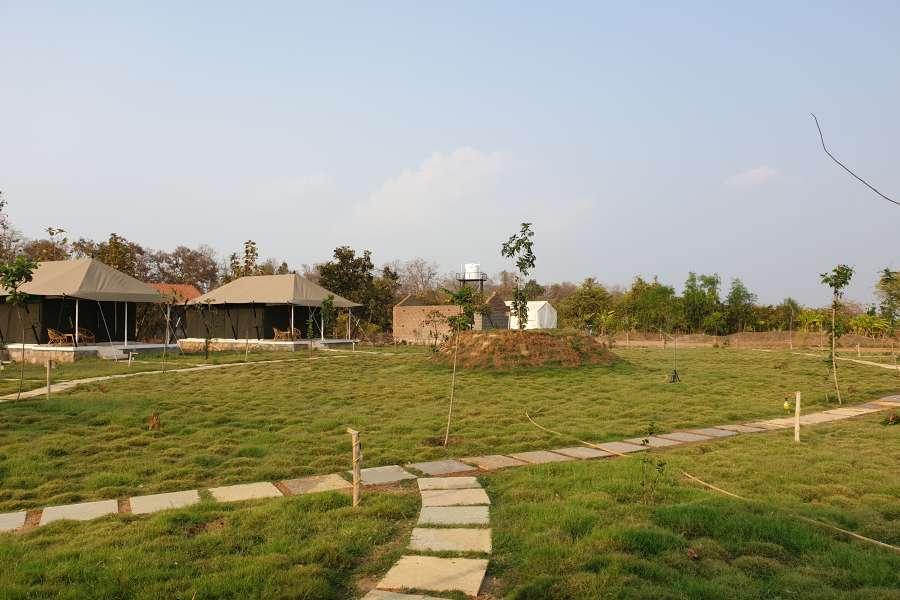 alt-text Tents Bodhivann Resort Tadoba Rooms in Tadoba 3 nqunqw
