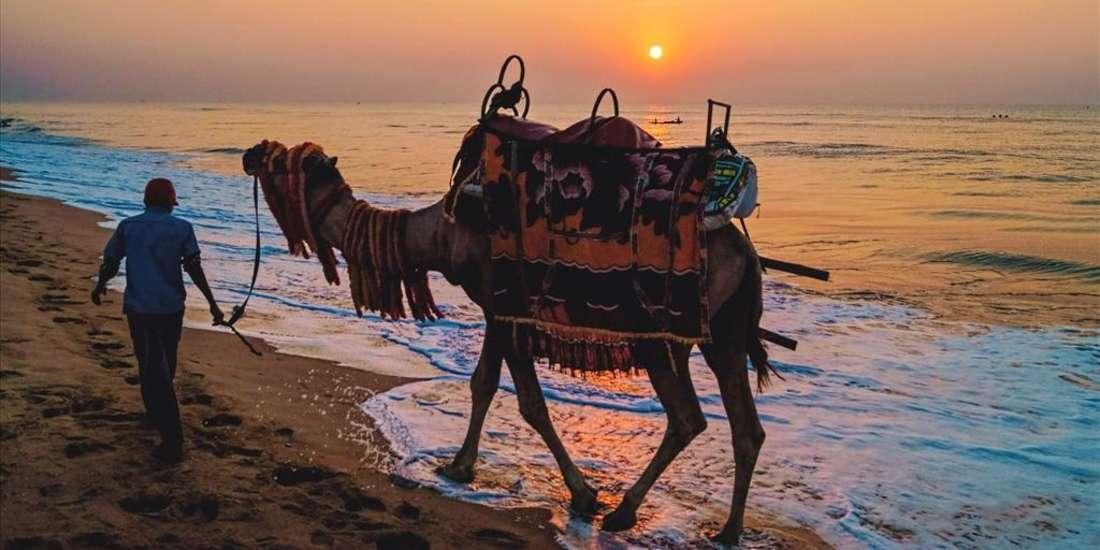 Mahodadhi Palace - A Beach View Heritage Hotel in Puri Best Resorts near Puri Beach
